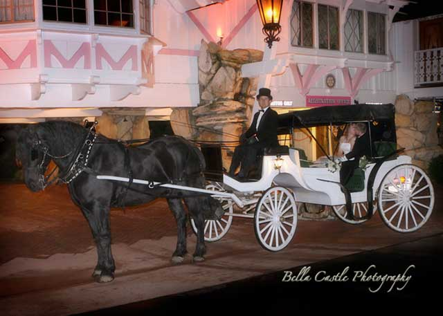 Bride and groom in wedding carriage